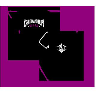 visuel picto du site web chromatorium